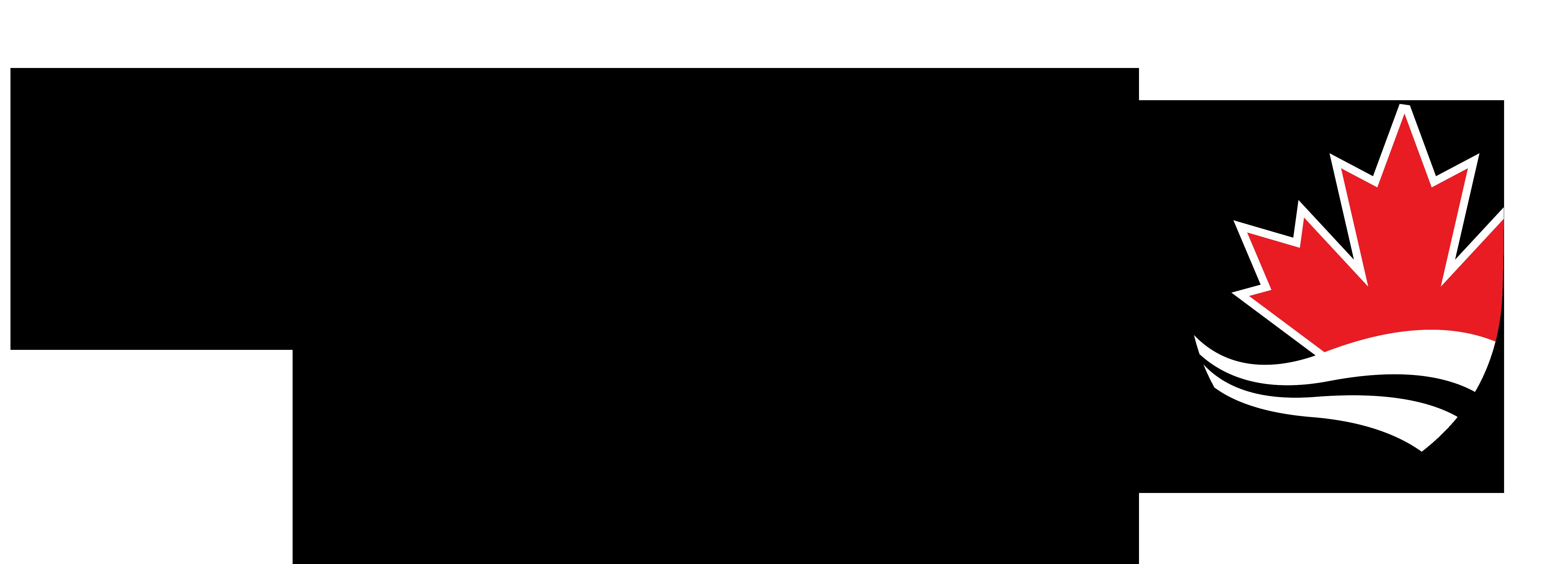 Carleton Logo black-red large